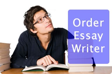essay writer1 Essay writer