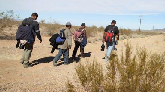 Illegal immigration essay