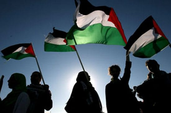 PLO Palestine Liberation Organization essay